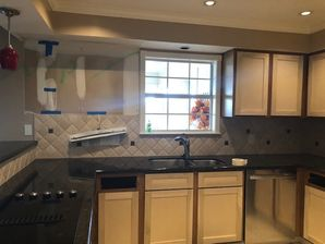 Kitchen Cabinets in Houston, TX (3)